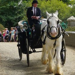Sark Wedding Carriages